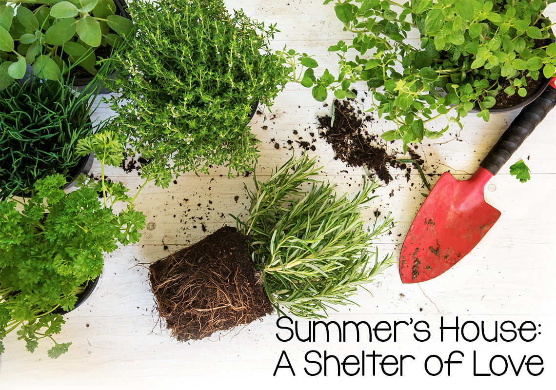 Summer's House A Shelter of Love